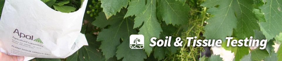 header_soil